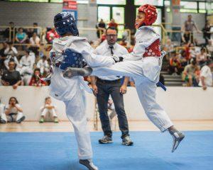 Taekwondo Bild 1